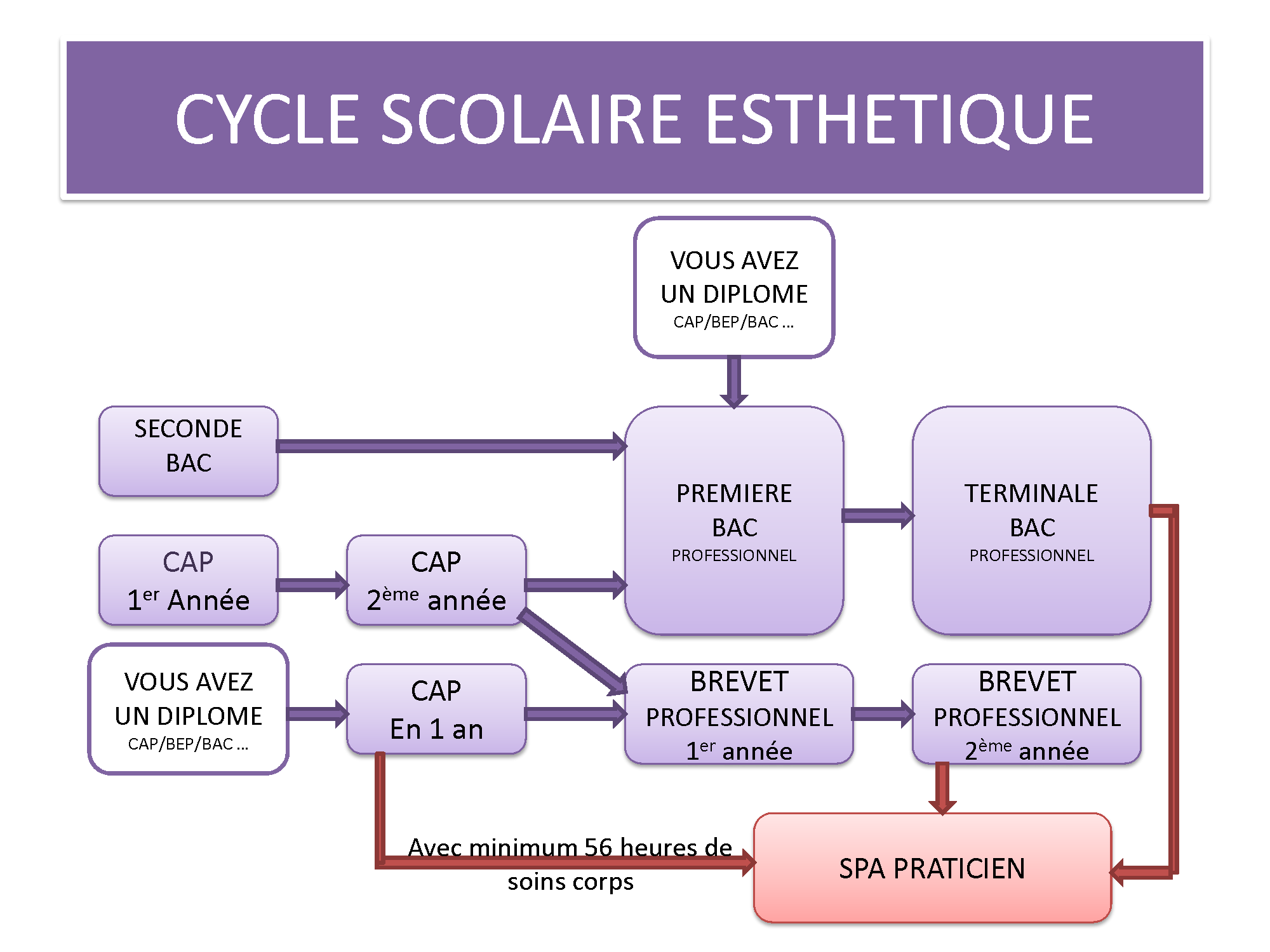PLAN DE CARRIERE ESTHETIQUE